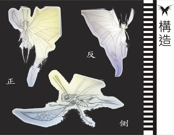 刺蝶 - 8.jpg