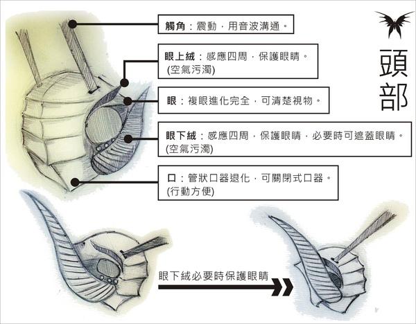 刺蝶 - 9.jpg