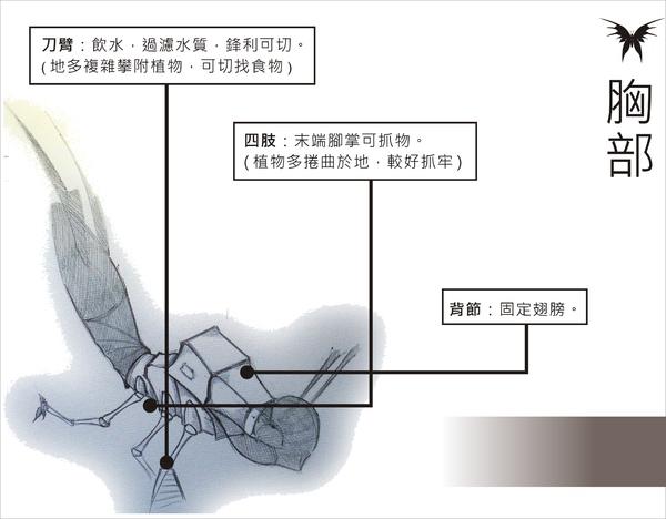 刺蝶 - 10.jpg