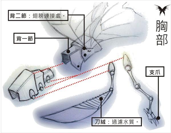 刺蝶 - 11.jpg