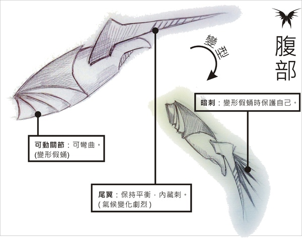 刺蝶 - 12.jpg