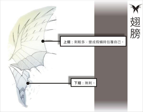 刺蝶 - 13.jpg