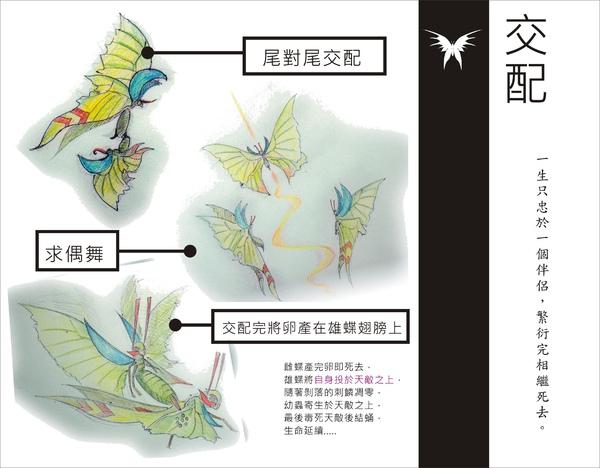 刺蝶 - 15.jpg