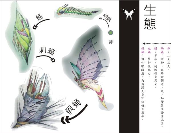 刺蝶 - 16.jpg