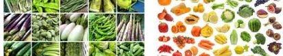 一般的蔬菜水果解酒
