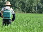 空氣污然,農藥毒素汙染,化學製劑氾濫,直接間接造成干損傷