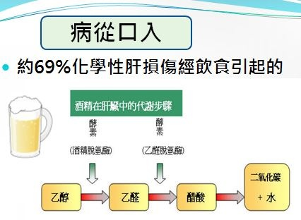 健安丰久仙(椇杞丹參片)預防病從口入造成,酒精乾,脂肪肝、肝硬化,最強解酒藥