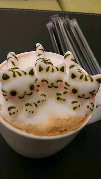 咕嚕貓咖啡_8985