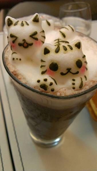 咕嚕貓咖啡_9365