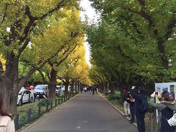 20161116 日本第三天_2650