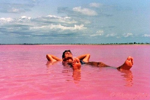 伯斯粉紅湖
