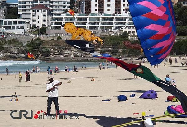 雪梨風箏節