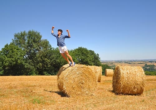 hay-field-bale-agriculture.jpg