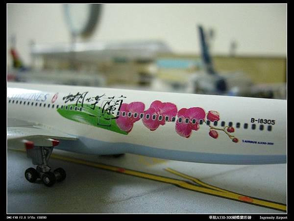 20110725蝴蝶蘭-03.JPG