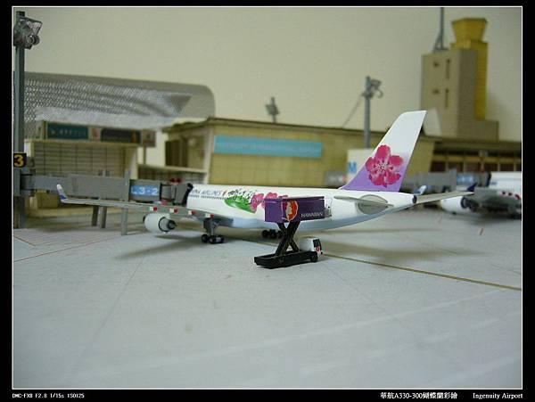 20110725蝴蝶蘭-06.JPG