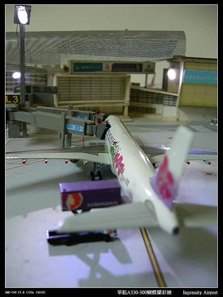 20110725蝴蝶蘭-08.JPG