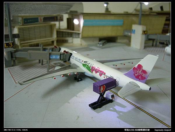 20110725蝴蝶蘭-09.JPG