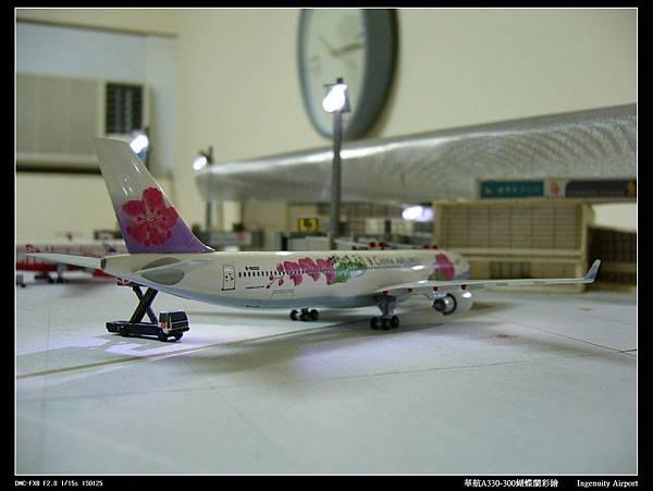 20110725蝴蝶蘭-10.JPG