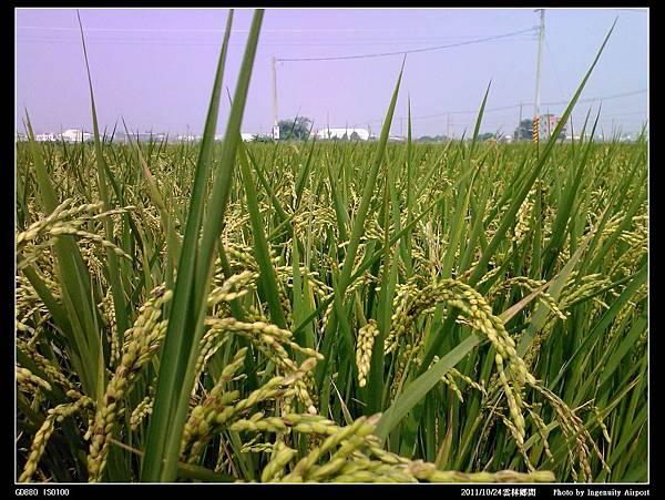 20111024雲林城鄉訪談10.jpg