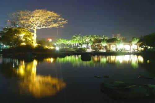 運動夜景.jpg