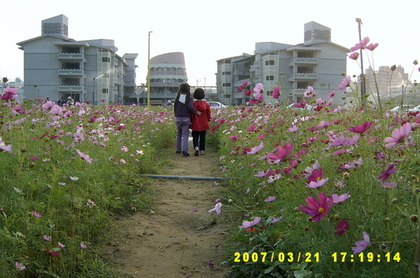 070321-大橋花海02.jpg