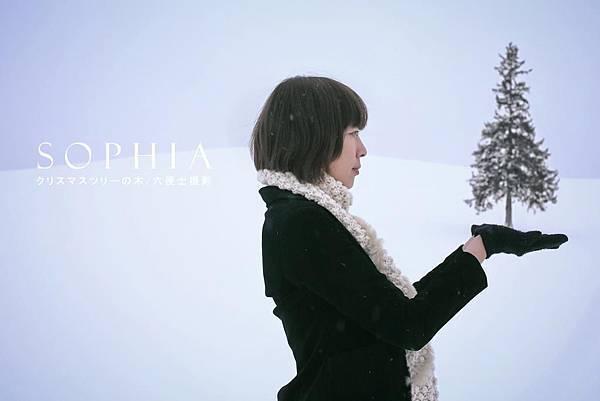 2013 Feb. Hokkaido Biei