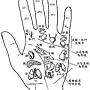 手-左反射區-2.jpg