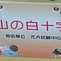 文字菊-山的白十字.jpg