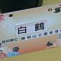 菊花-白鶴.jpg