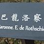 玫瑰-巴龍洛察.JPG