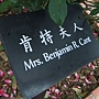 玫瑰-肯特夫人.JPG