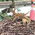 無根的樹-裝買藝術 1070504_2 台北植物園.JPG