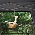 無根的樹-裝買藝術 1070504_4 台北植物園.JPG
