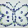 蝶豆 1070915_7 大姐種的.JPG