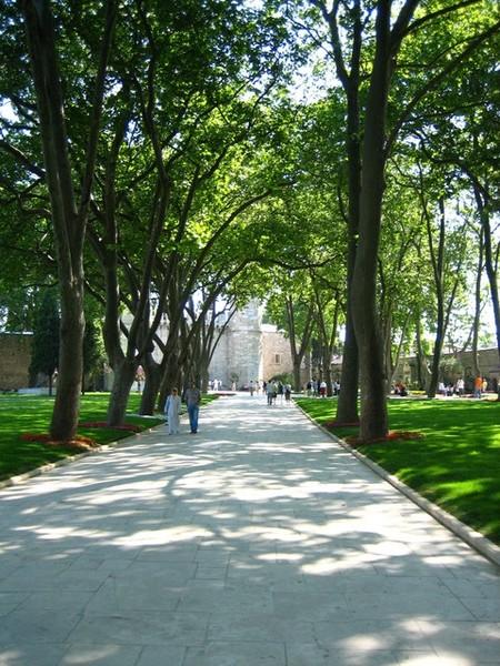 艷陽下的舊皇宮步道