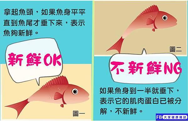 魚新鮮_.jpg