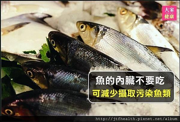 魚內臟不要吃.jpg