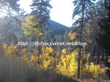 Plumas County CA-16.JPG