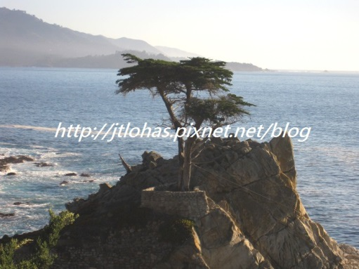 Pacific Coast California-151.jpg
