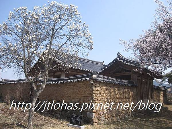 Korea 韓國之旅-217.JPG