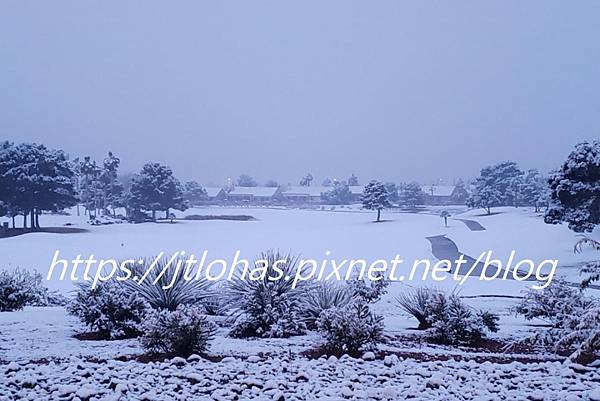 Let It Snow!-8.jpg