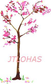 LOHAS.jpg