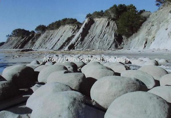 Sonoma Coast-1.jpg