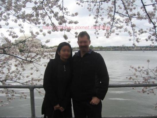 Cherry Blossom in Washington DC-5.JPG
