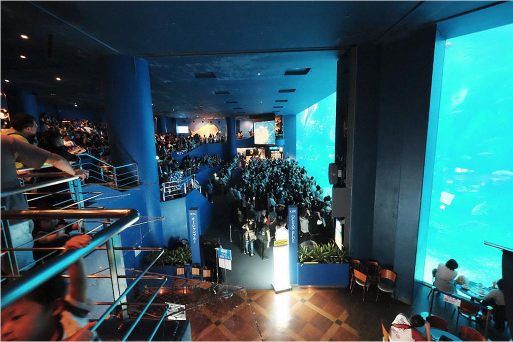沖縄美ら海水族館_16.png