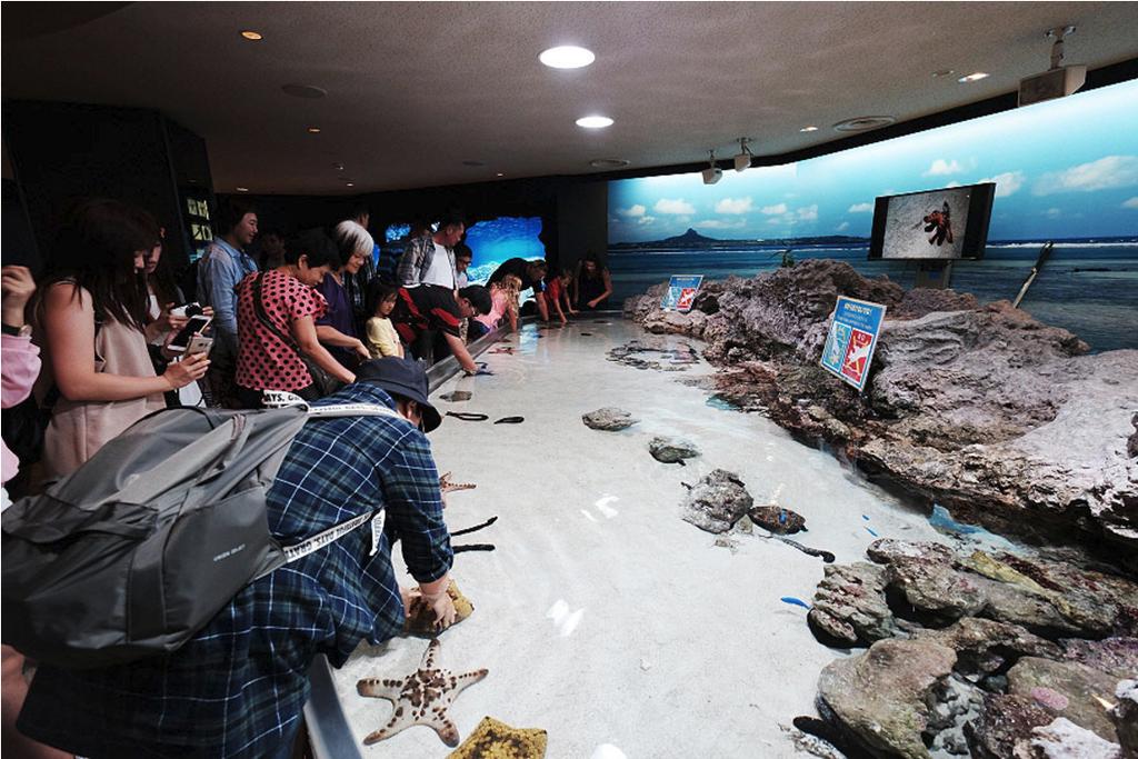 沖縄美ら海水族館_14.png