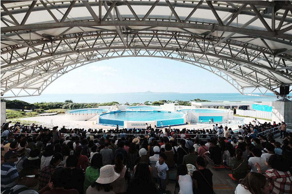 沖縄美ら海水族館_18.png