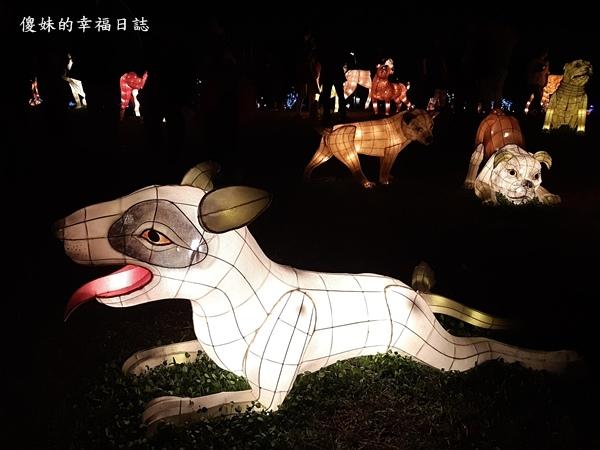 20180304大都會公園燈會_180305_0027.jpg