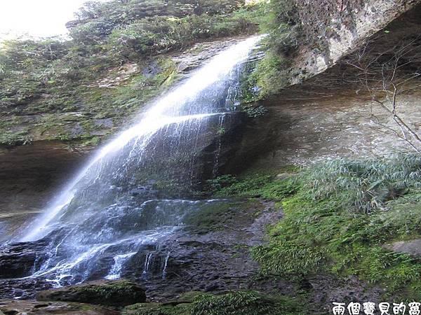 PhotoCap_溪頭007.jpg