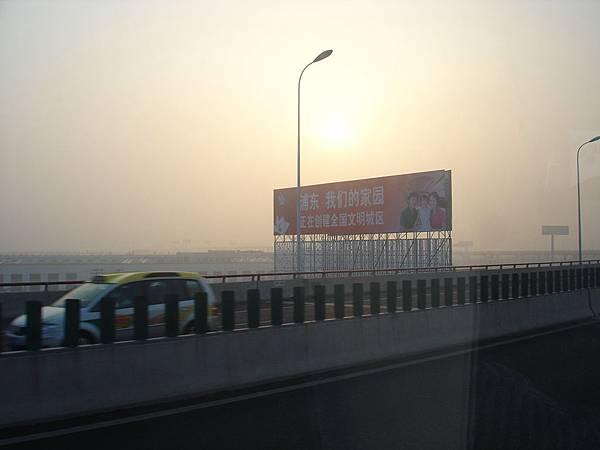上海T霸看版